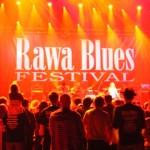 Zdjęcia z 31 Rawa Blues. Spodek - Katowice 2011 (11)
