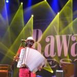 Zdjęcia z 31 Rawa Blues. Spodek - Katowice 2011 (54)