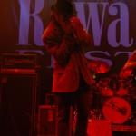 Zdjęcia z 31 Rawa Blues. Spodek - Katowice 2011 (64)