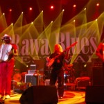 Zdjęcia z 31 Rawa Blues. Spodek - Katowice 2011 (106)